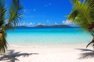 Wallpaper tropics sea beach desktop high quality