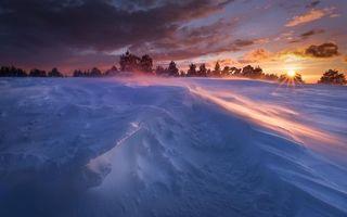 Бесплатные фото зима,снег,сугробы,ветер,закат,солнце,деревья