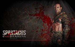 Бесплатные фото воин,spartacus,сериал спартак,гладиатор,песок и кровь