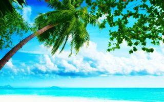Бесплатные фото океан,вода,остров,брызги,волна,горизонт,природа
