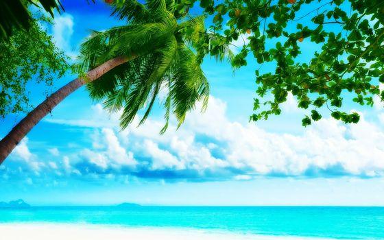 Фото бесплатно вода, океан, природа