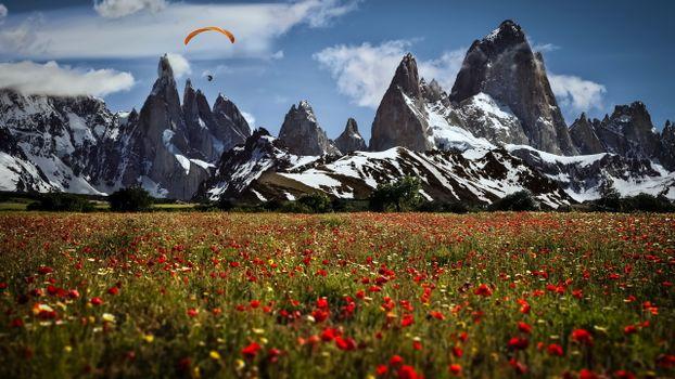 Фото бесплатно поле, цветы, горы, скалы, небо, парашютист, снег, пейзажи