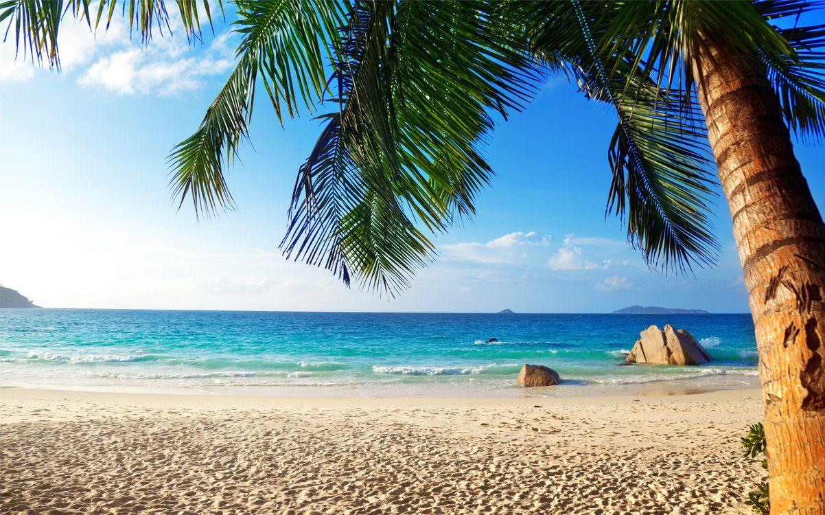 Фото бесплатно тропики, море, пляж - на рабочий стол