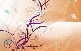 Фото бесплатно узор, цветок, листья