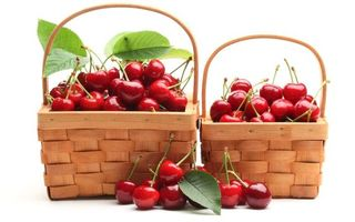Бесплатные фото вишня,корзинка,ветка,листья,гроздья,урожай,лето