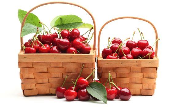Photo free cherry, basket, branch