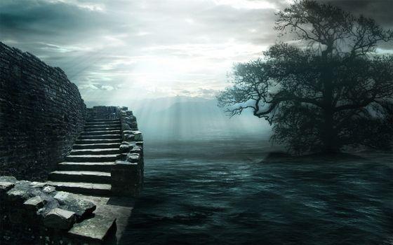Бесплатные фото вода,дерево,стена,лестница,ветки,темнота,ситуации