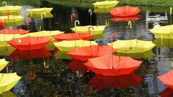 Бесплатные фото зонтики, разноцветные, ручки, лужи, свет, цвета, вода