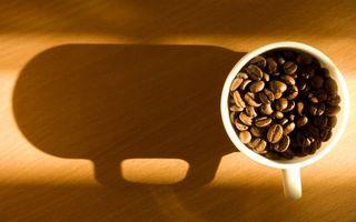 Бесплатные фото чашка,белая,кофе,зерна,свет,тень,напитки