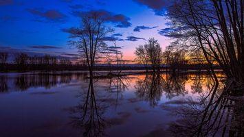 Бесплатные фото деревья,озеро,вода,лето,закат,сумерки,облака