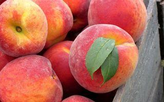 Обои фрукты, персики, красные, листья, зеленые, ящик, еда