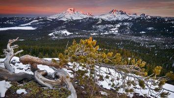 Бесплатные фото горы,деревья,лес,тучи,небо,закат,снег