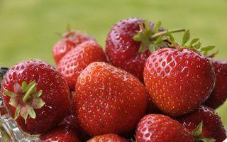 Бесплатные фото клубника,ягода,спелая,урожай,листики,зелень,еда
