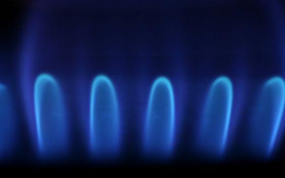 Бесплатные фото конфорка,газ,горение,огонь,пламя,языки