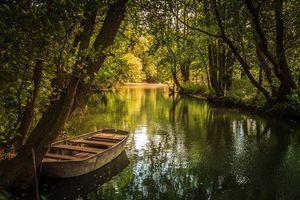Бесплатные фото лес,деревья,река,лодка,пейзаж