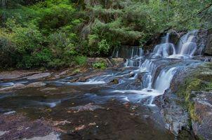 Бесплатные фото лес,деревья,скалы,водопад,природа