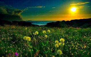 Фото бесплатно поле, вода, волны