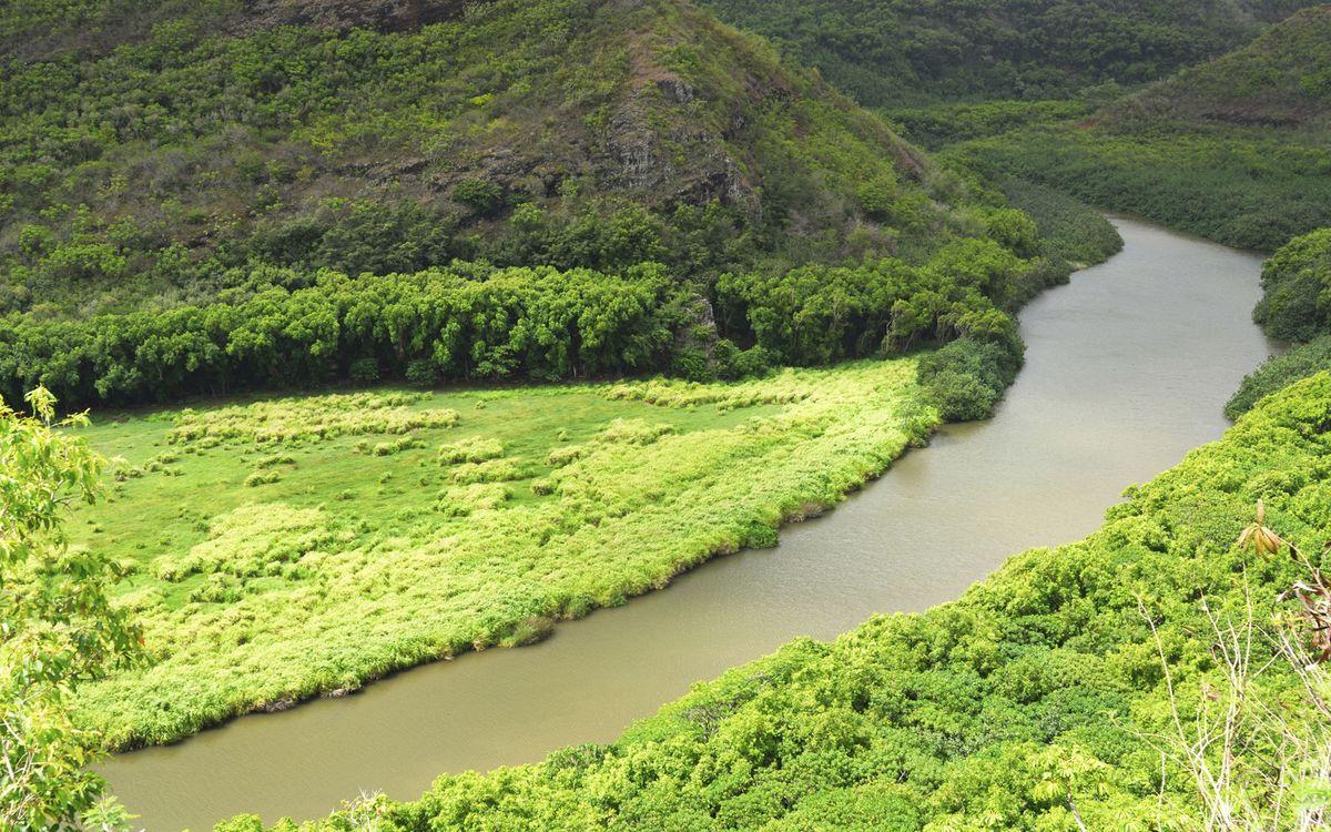 Фото бесплатно река, лес, вода, деревья, поляна, небо, горы, природа, пейзажи, пейзажи - скачать на рабочий стол