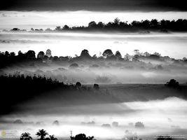 Фото бесплатно туман, national geographic, черный