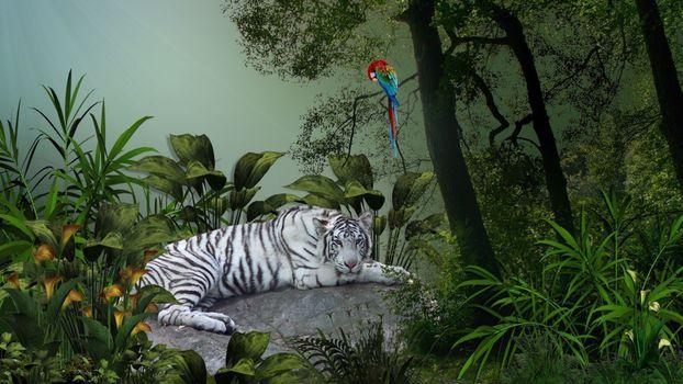 Бесплатные фото белый,бенгальский,тигр,камень,трава,деревья,попугай,животные