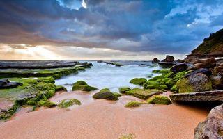 Бесплатные фото берег,море,песок,камни,валуны,скала,ил