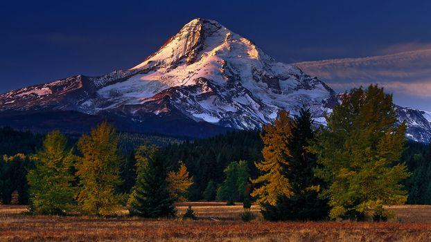 Бесплатные фото горы,снег,пик,небо,деревья,трава,пейзажи