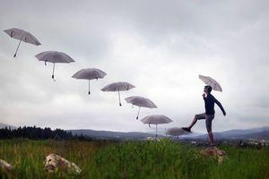 Бесплатные фото мужчина,зонтики,подъем,вверх,юмор