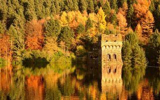 Фото бесплатно озеро, отражение, лес, деревья, осень, природа, пейзажи