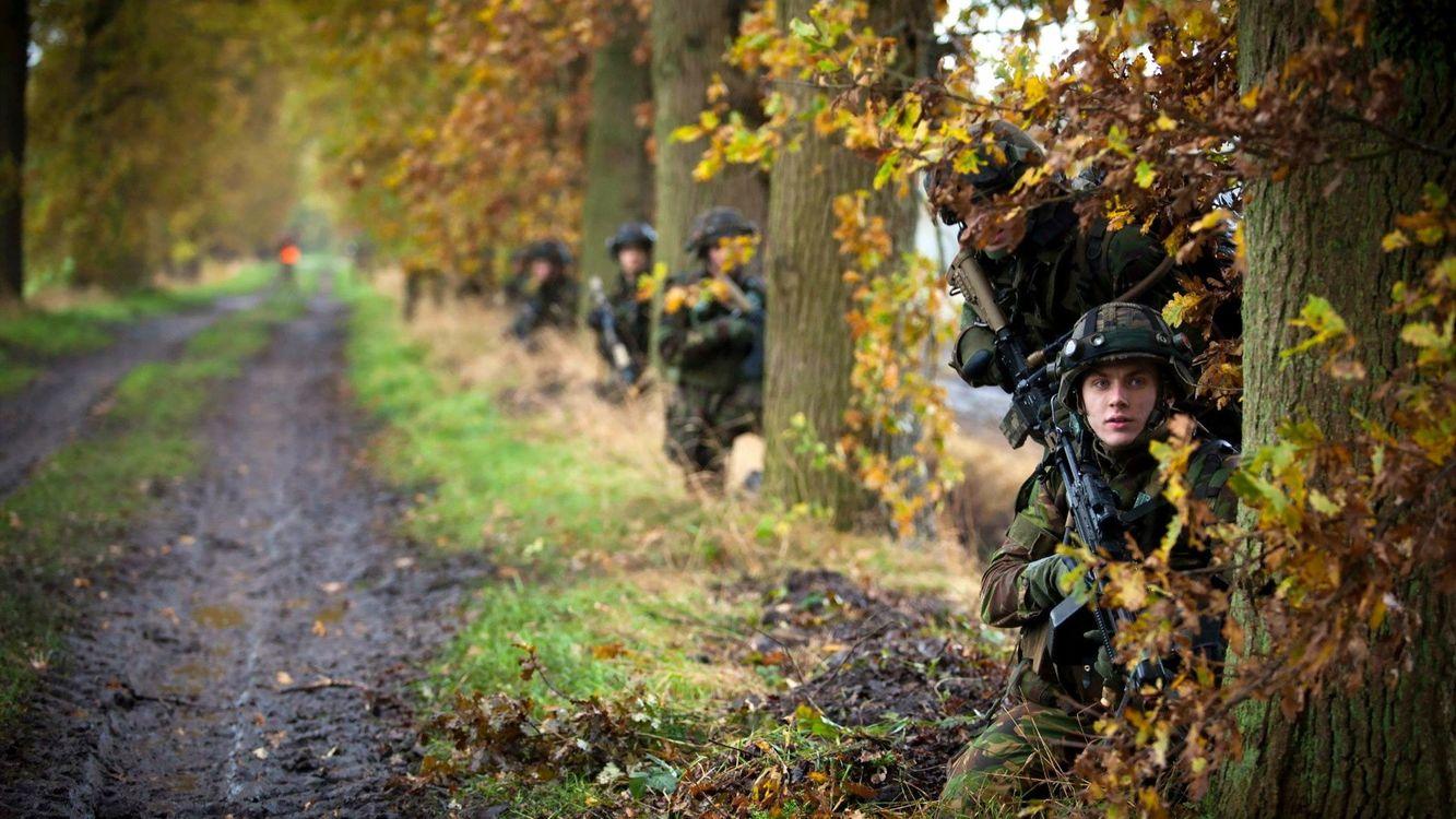 Фото бесплатно солдаты, лес, деревья, автоматы, листья, дорога, оружие, оружие