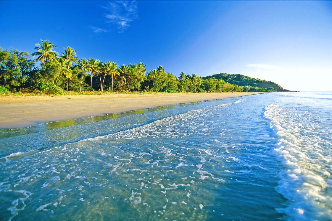 Фото бесплатно пейзажи, пальмы, море - на рабочий стол