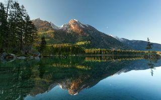 Бесплатные фото озеро,горы,лес,елки,папоротник,пейзажи
