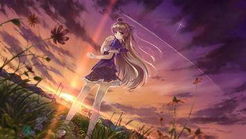 Обои девочка, волосы, прическа, платье, юбка, небо, звезды, трава, поле, луг, лето, аниме