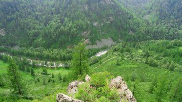 Фото бесплатно горы, деревья, листья
