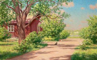 Бесплатные фото небо,облака,деревья,дом,кусты,дорожка,курица