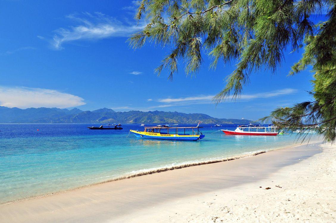 Скачать тропики, море, пляж картинки бесплатно
