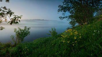 Бесплатные фото туман,озеро,вода,деревья,горы,лес,ветки