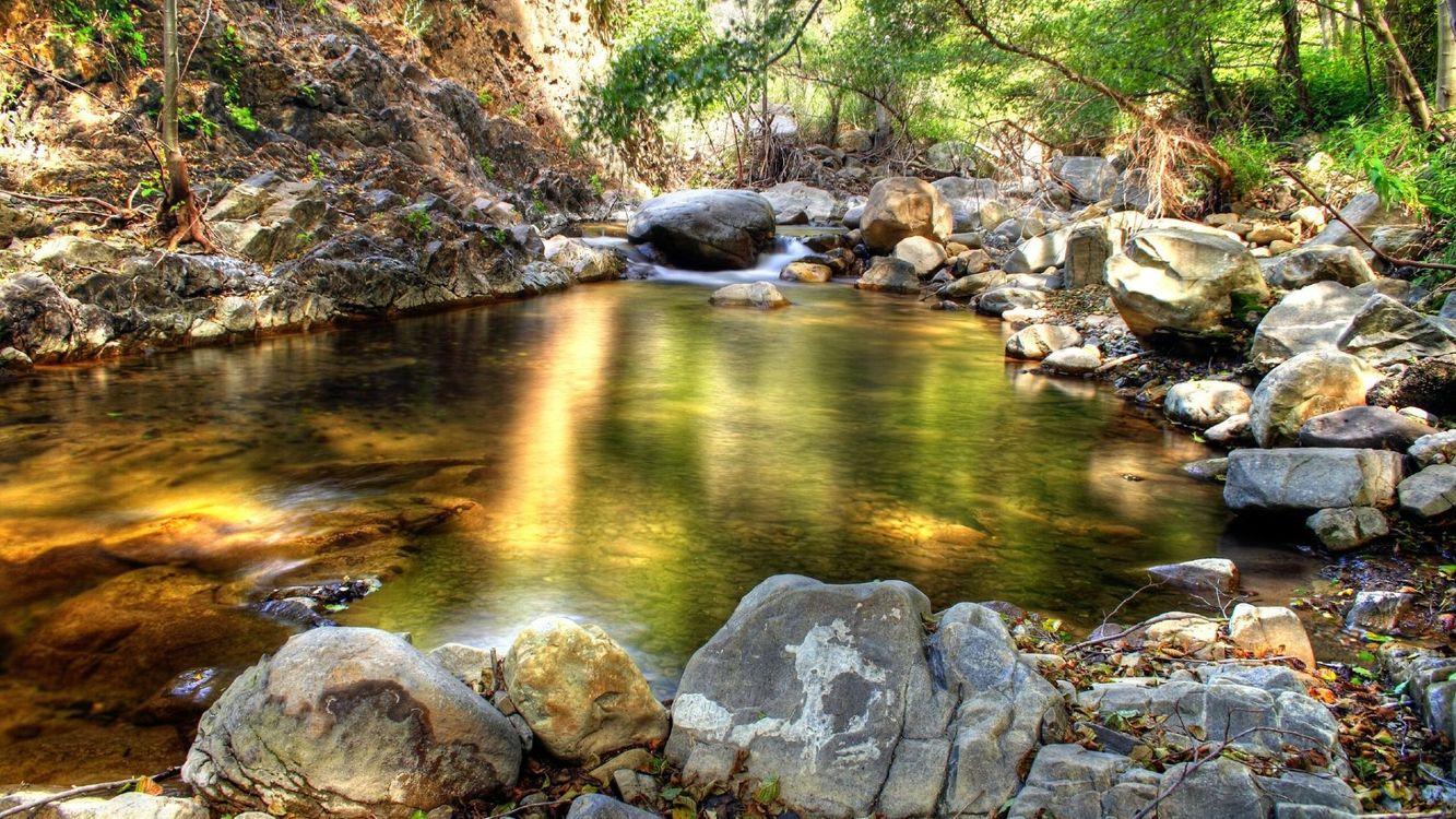 Фото бесплатно вода, лес, деревья, речка, камни, зелень, природа, природа
