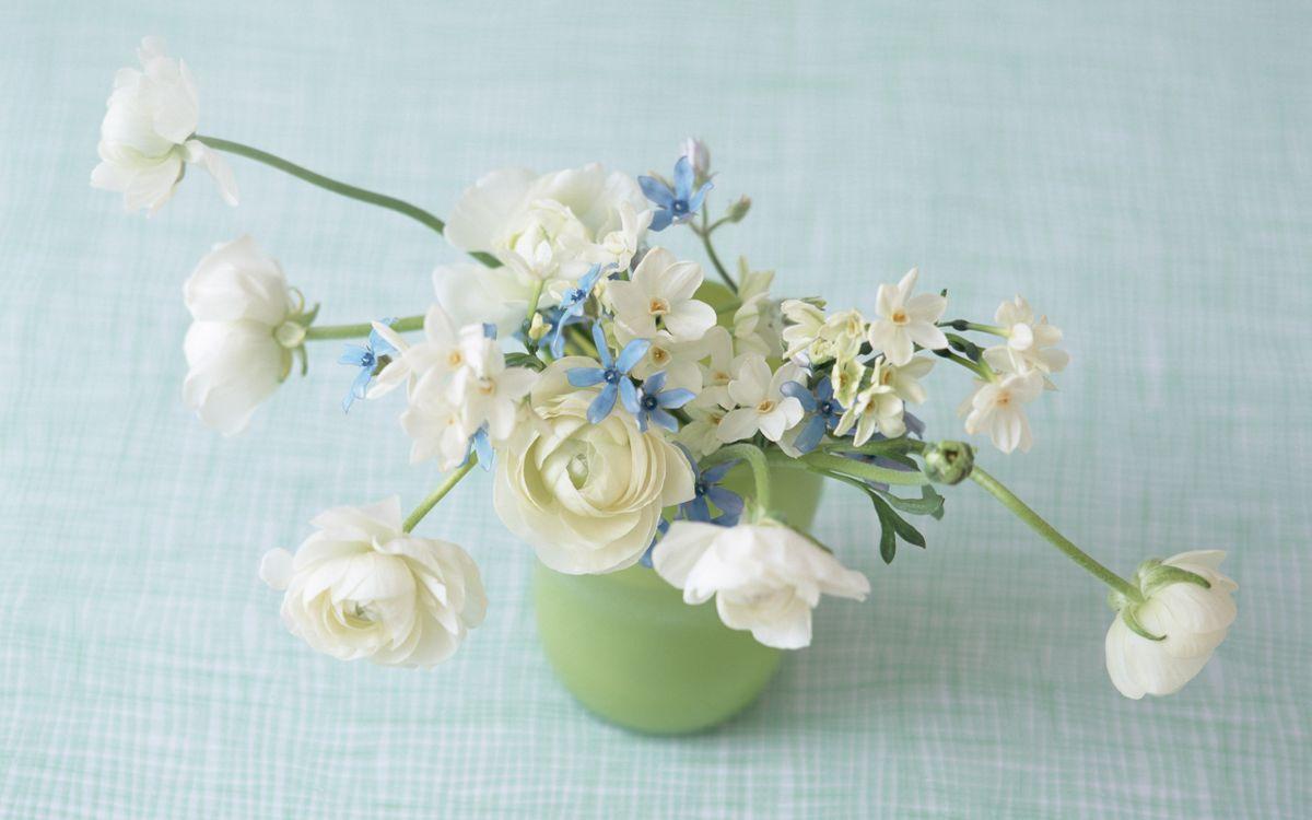 Фото бесплатно цветы, нежная композиция, цветы в вазе - на рабочий стол