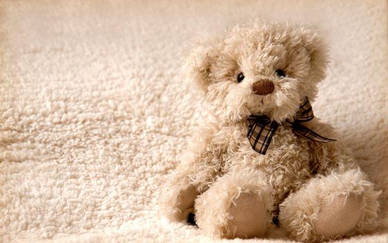 Фото бесплатно плюшевый, мишка, игрушка