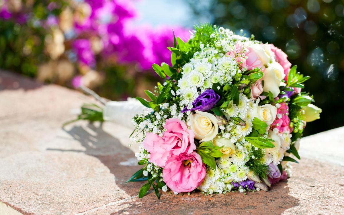 Фото бесплатно букет, розовые, белые, листья, зеленые, розы, цветы, цветы