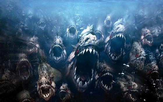 Photo free movies, animals, piranhas