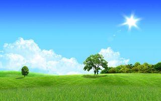 Фото бесплатно луг, небо, лето