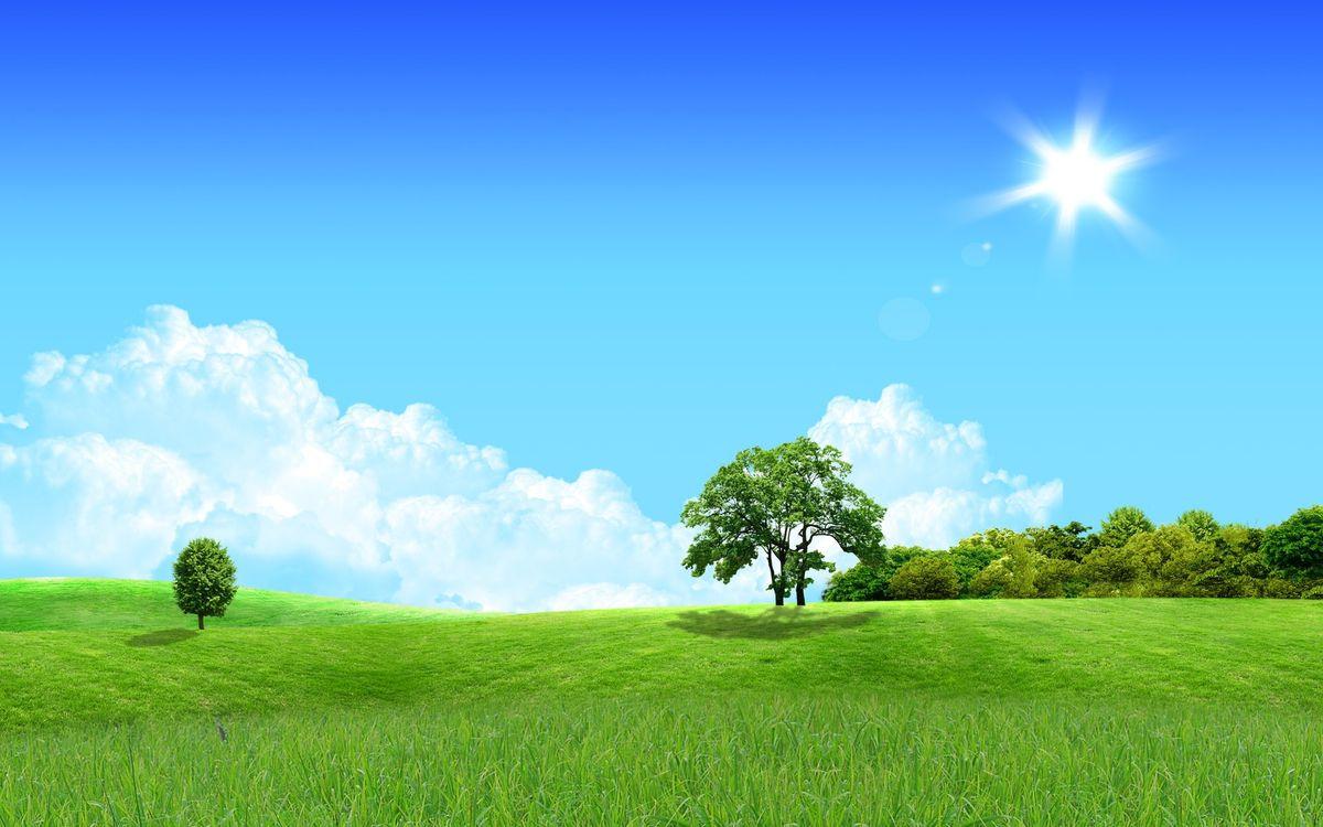 Картинки с голубым небом и солнцем, добрым днем картинки