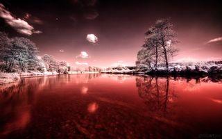Бесплатные фото река,вода,отражение,деревья,небо,облака,природа