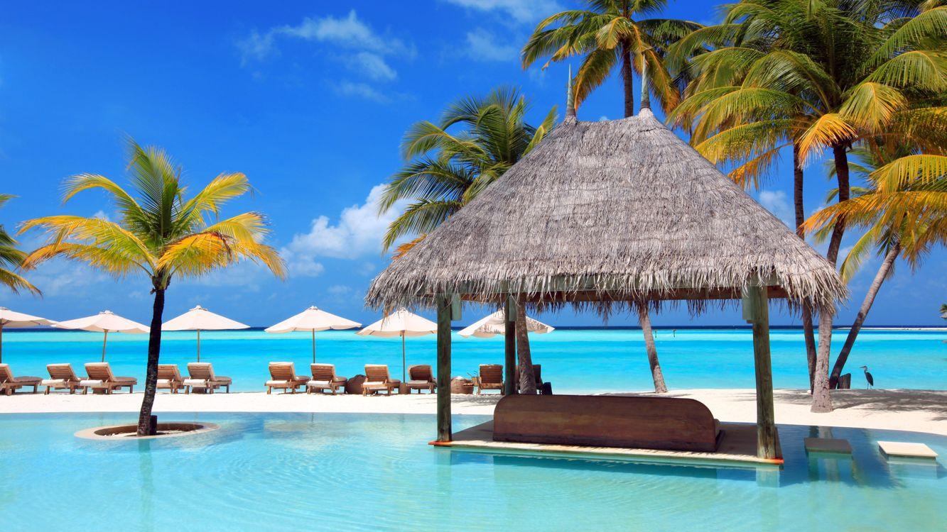 Фото бесплатно тропиках, разное, пляж - на рабочий стол
