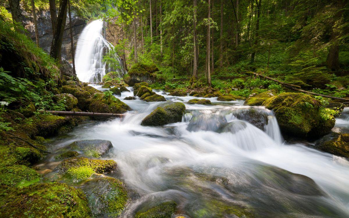 Фото бесплатно водопад, река, деревья, камни, мох, трава, природа, природа