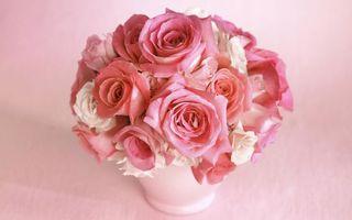Бесплатные фото букет роз, розы, розовые, белые розы, цветы