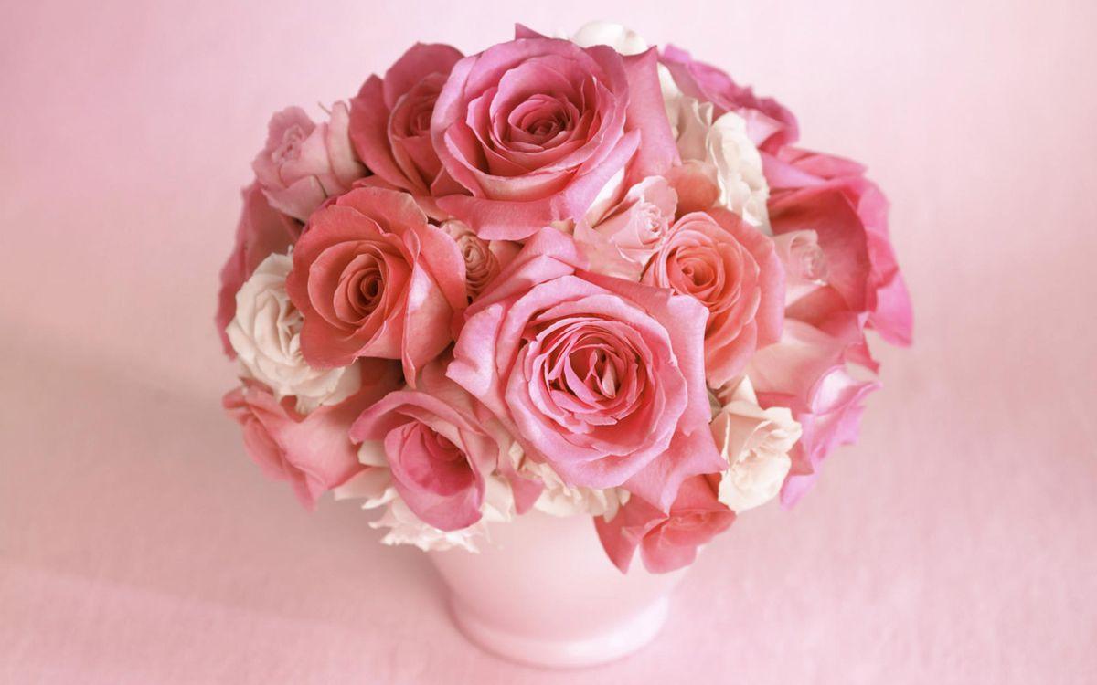 Фото бесплатно букет роз, розы, розовые - на рабочий стол
