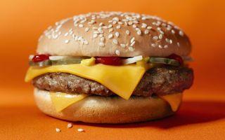 Бесплатные фото фаст фуд,гамбургер,булочка,котлета,сыр,овощи,кетчуп
