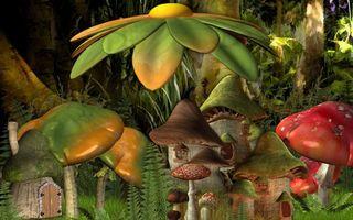 Обои грибы, лес, шляпки, ножки, фантазии, дом, сказка, разное